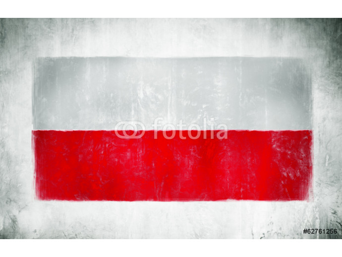 Painting Of The National Flag Of Poland 64238