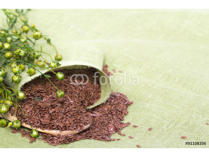 flax plant and spoon of flax seeds on linen background 64238