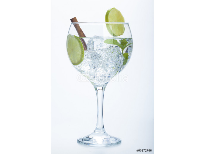 lemon and cinnamon gin tonic isolated over white 64238