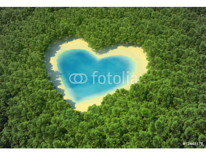 Heart-shaped pond in a tropical forest 64238
