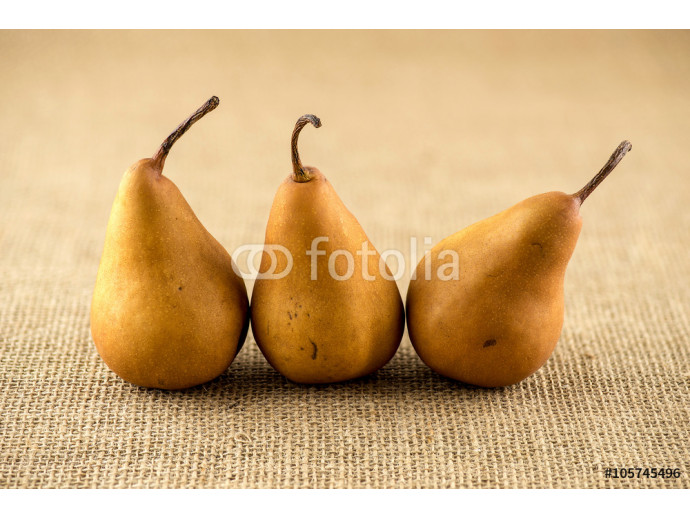 Line up of curvy shaped brown bosc pears 64238