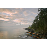 The early morning, misty view from Ruckle Provincial Park on Saltspring Island. British Columbia, Canada. 64238