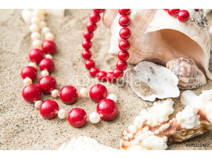 seashells and  necklace on sand at the beach 64238