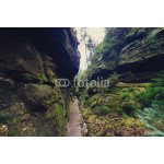 hiking path through rocky canyon in forest landscape 64238