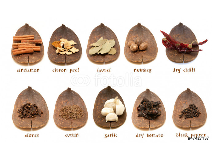 Spice collection on white background 64238