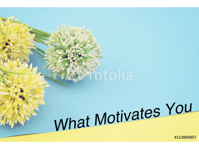 "Motivation quote ""WHAT MOTIVATES YOU"" over colorful colored paper with artificial flower and decoration. Selective focus applied. 64238"