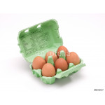 An open egg box with six eggs 64238