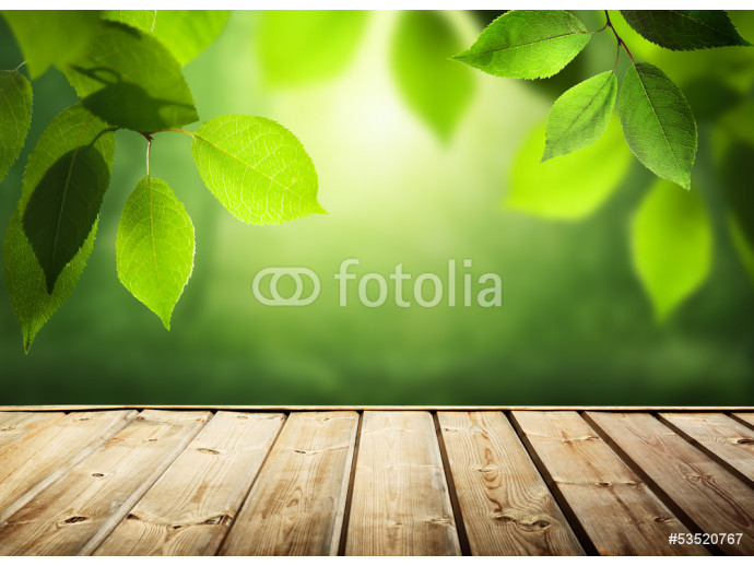 summer background with wooden surface 64238