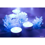 Blue flower and tea candles 64238