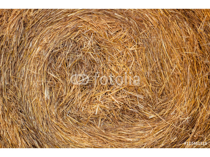 Fototapeta Dry hay stack natural background 64238