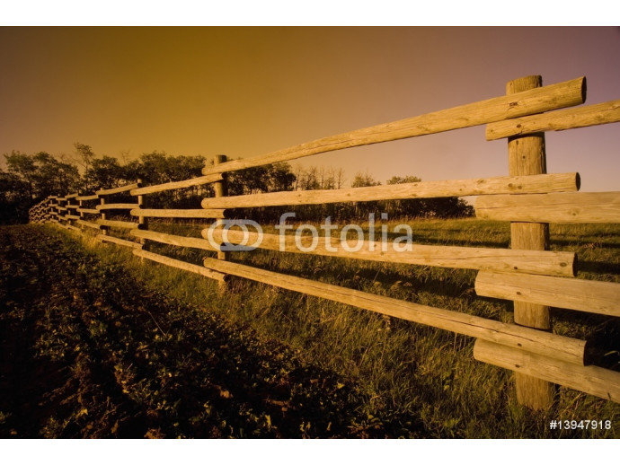 Wooden fence 64238
