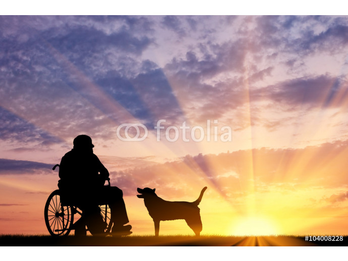 Silhouette of disabled and dog 64238