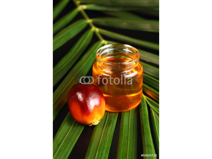 Oil palm fruit and cooking oil 64238