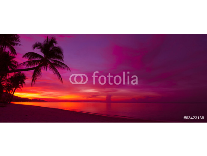 Fotomural decorativo Tropical sunset with palm tree silhouette panorama 64238