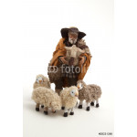 The sheperd and his sheep of the crib 64238