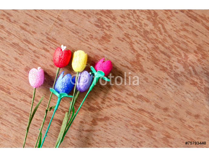 Fototapeta colorful artificial tulips flower made from silk cocoon on plywo 64238