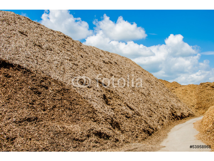 Wood chips 64238