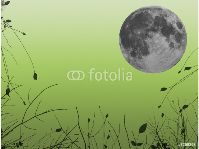 Moon background 64238