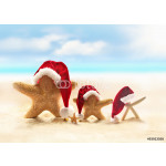 Family of starfish on summer beach and santa hat. Merry Christmas 64238