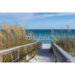 Beach Boardwalk with Dunes and Sea Oats 64238