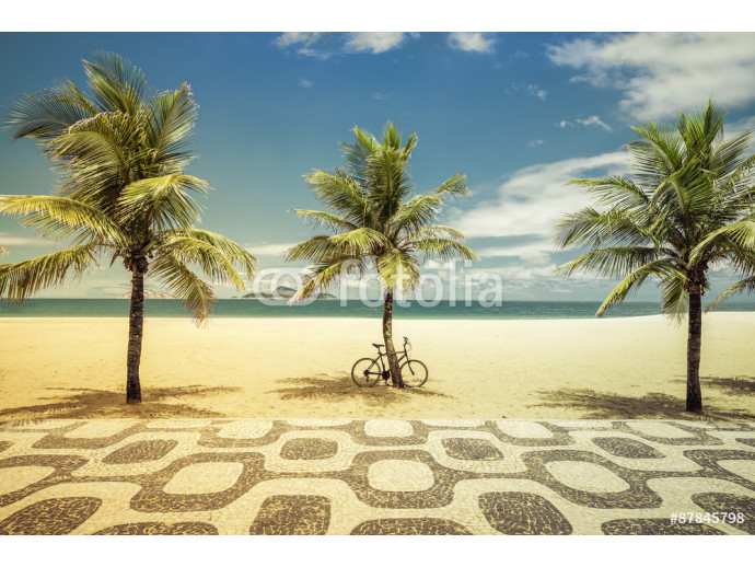 Palms with bicycle on Ipanema Beach in Rio de Janeiro 64238