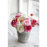 beautiful and delicate bouquet of buttercups in a zinc vase 64238