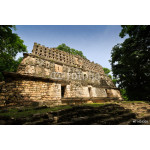 Top of a pyramid in Yaxchilan, Mexico 64238