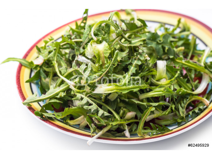 Salad with fresh dandelion leaves 64238