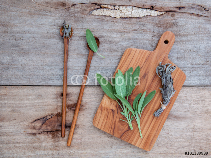 Alternative medicine and seasoning - Branch of fresh sage  and d 64238
