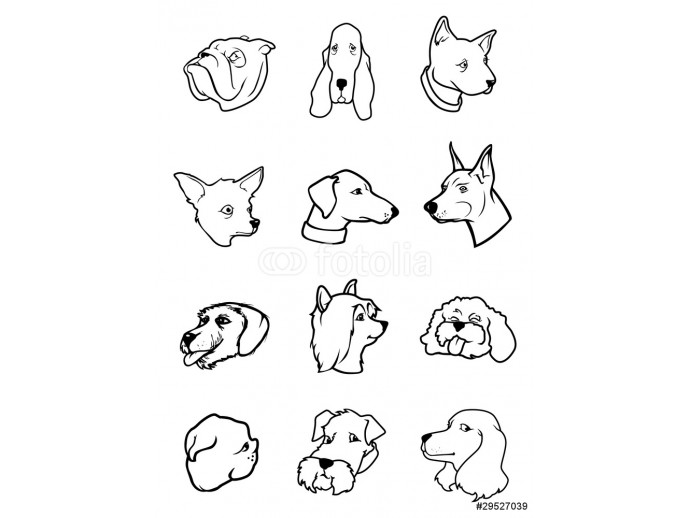 dog faces outlines 64238