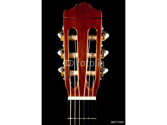 The classical guitar 64238