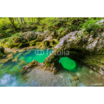 "The canyon Mostnica (Mostnice Korita) with crystal clear water and a rock called ""elephant (Slon?ek) in Triglav national park, Slovenia 64238"
