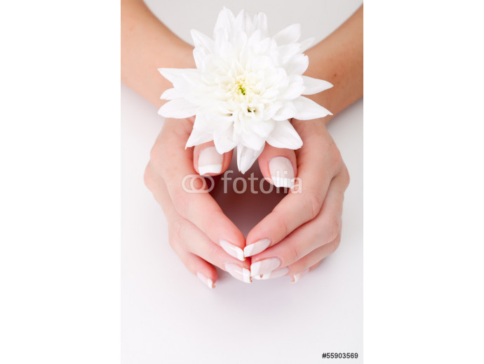 white flower with hands 64238
