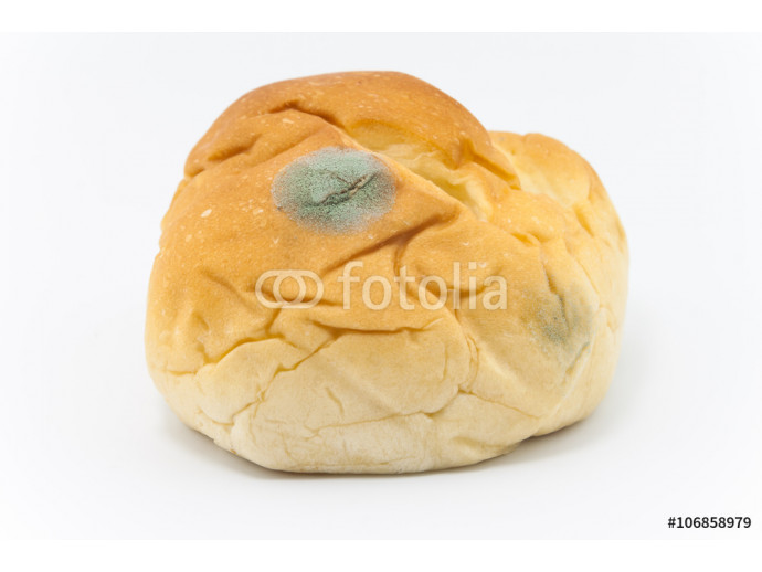 Moldy bread isolated on a white background 64238