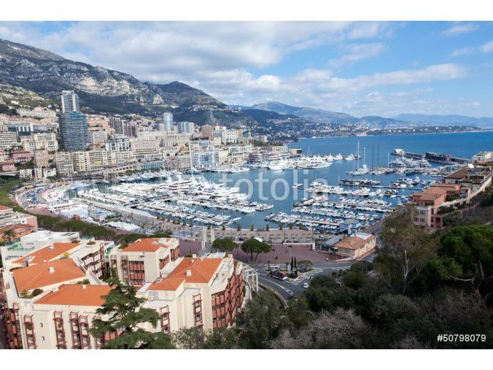 View of Monaco, Monte Carlo: Yachts in the harbour 64238