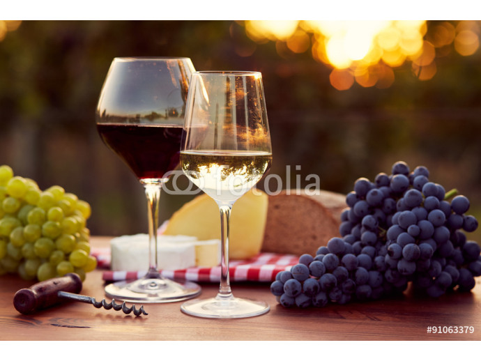 Two glasses of white and red wine 64238