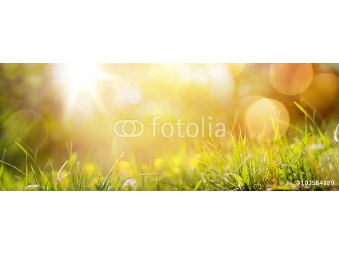 art abstract spring background or summer background with fresh g 64238