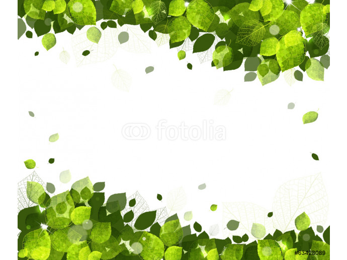 summer background of leaves 64238