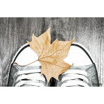 Sneakers with an autumn leaf 64238