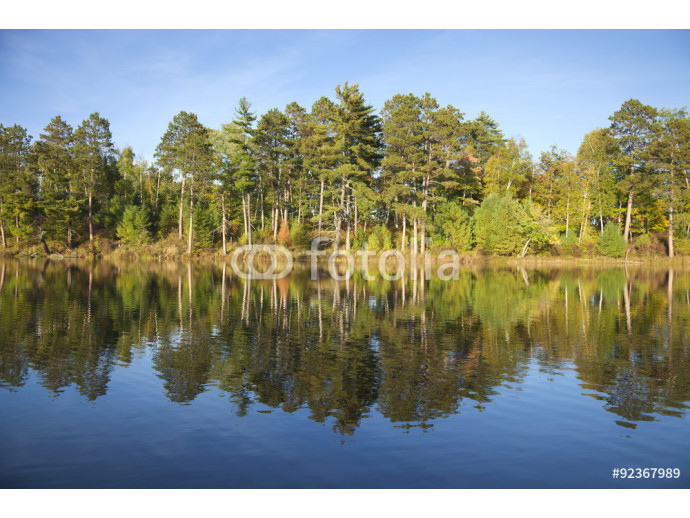 Photo wallpaper Typical northern Minnesota lake on a late September sunny aftern 64238