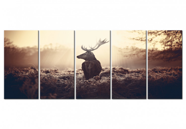 Stag in the Wilderness