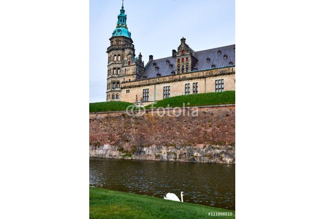 Tower on Elsinore castle in Denmark, rising over the moat with a white swan swimming around 64239