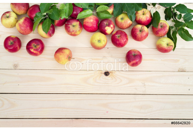 Toile déco Apples on wooden board background 64239
