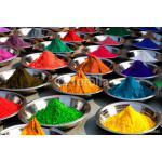 Colorful tika powders on Orcha market, India 64239