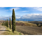 Tuscan landscape in winter, Val d'Orcia (Italy). 64239
