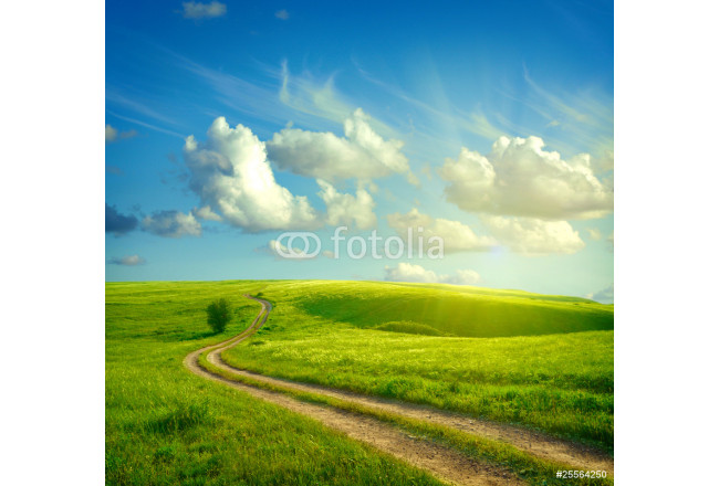 Summer landscape with green grass, road and clouds 64239