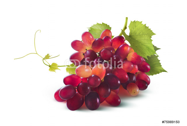Red grapes bunch with leaf isolated on white background 64239