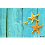 Family of starfish on a blue wooden background. 64239