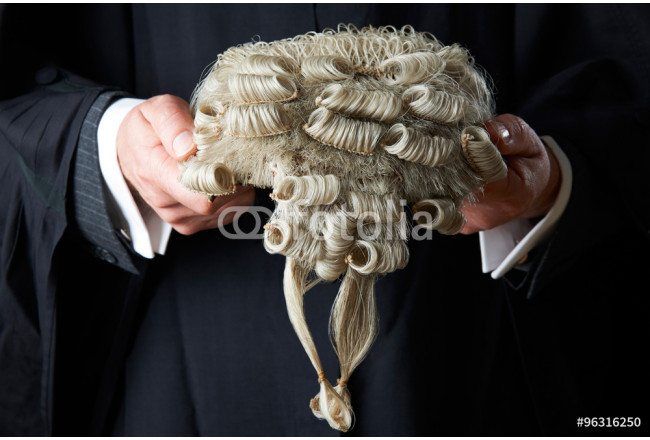 Barrister Holding Wig 64239