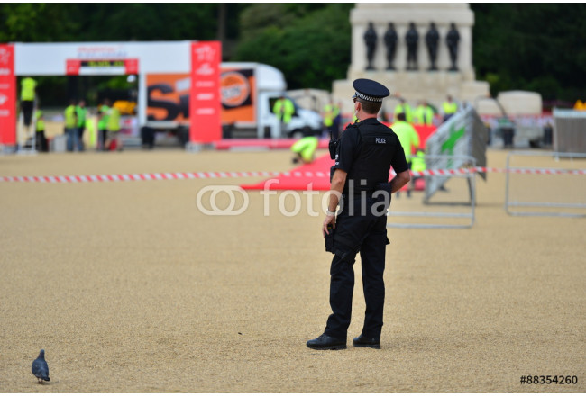 Obraz nowoczesny A policemen on guard at Horse Guards Parade 64239